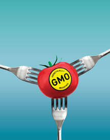 GMO Food Labeling
