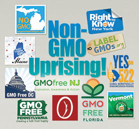 Non-gmo, gmo-free groups US