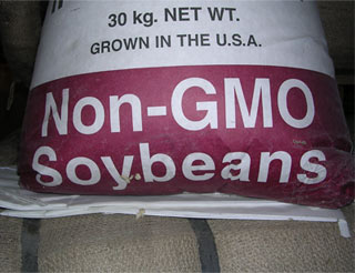 Non-GMO soybeans grown in the USA