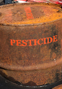 Farmers Using Pesticides with GM Crops