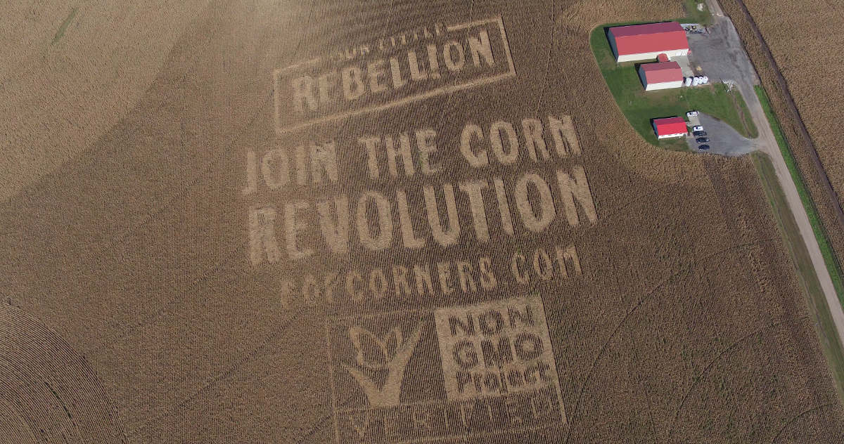 Join the Corn Revolution