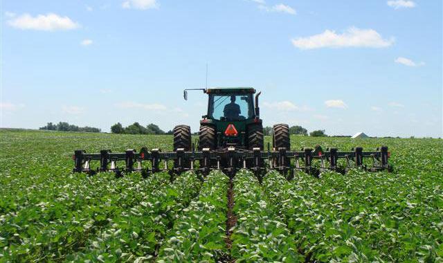 Tractor in organic field