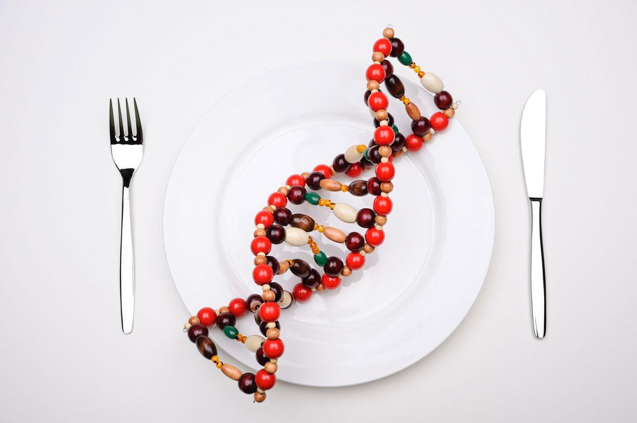DNA on dinner plate