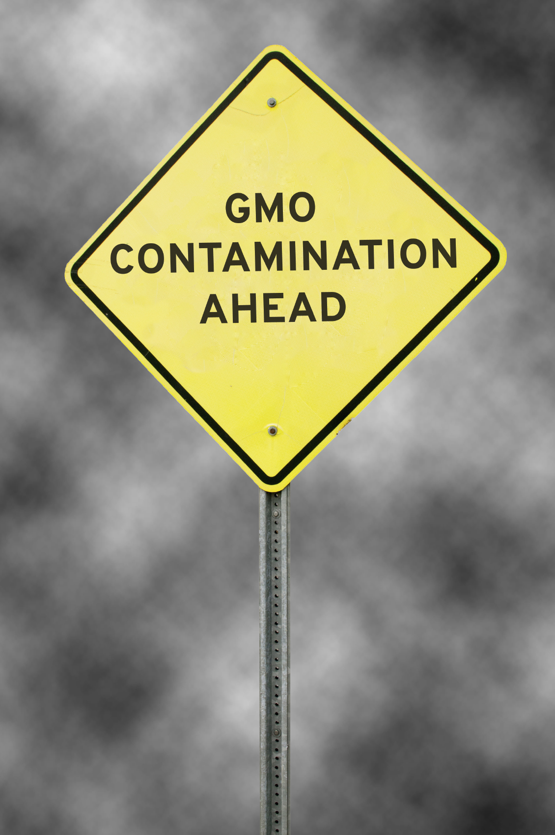 Roadsign warning that there is GMO contamination ahead