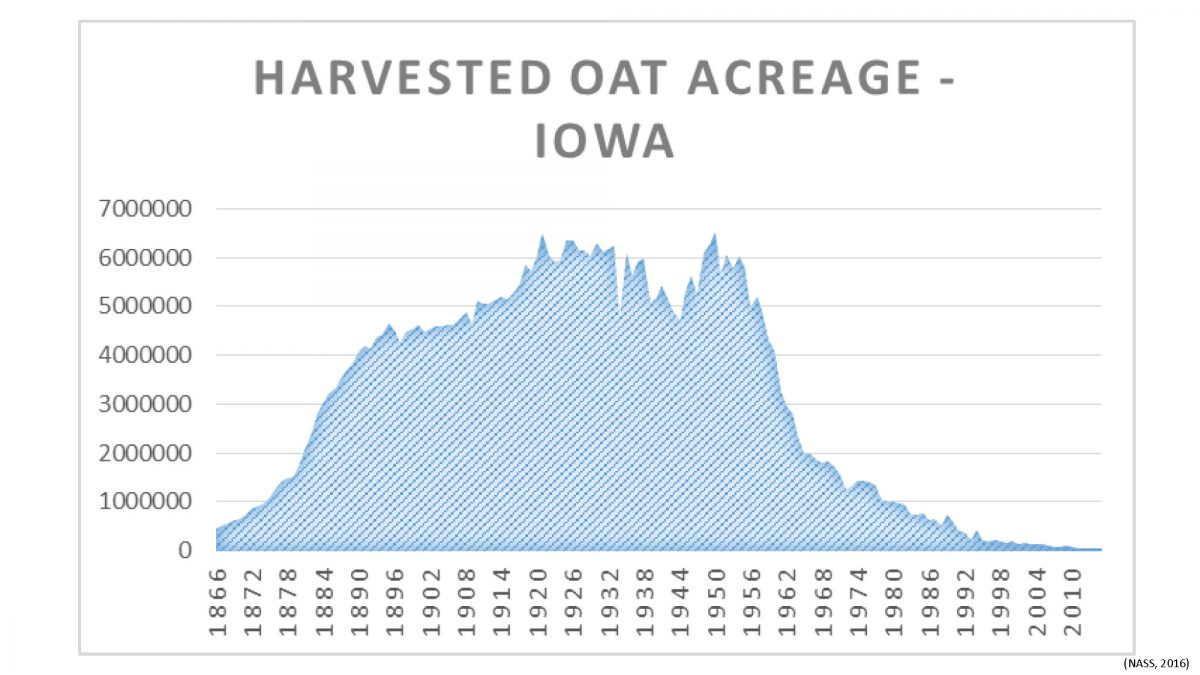 Chart of oat production in Iowa