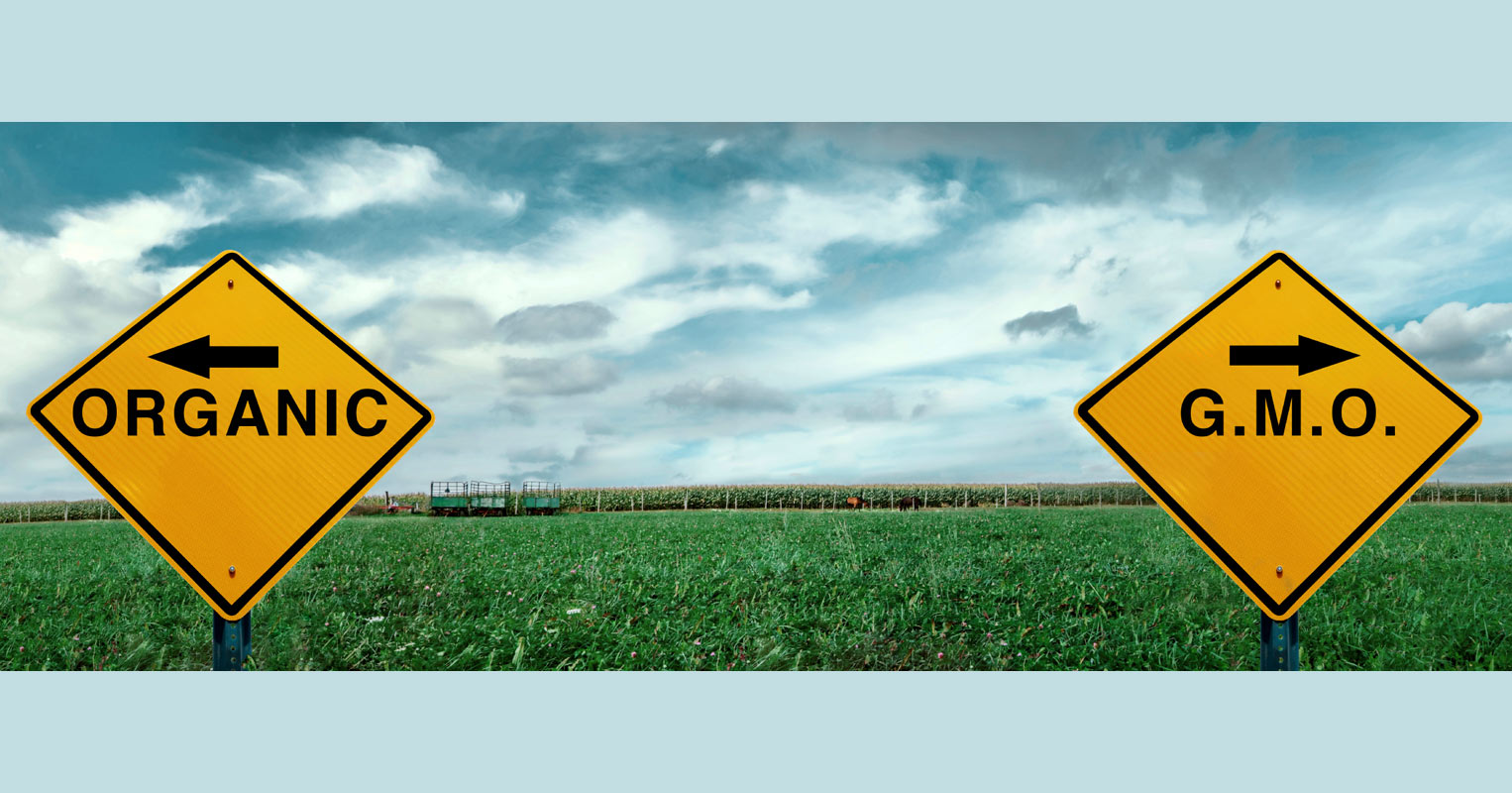 GMO vs Organic warning signs in field