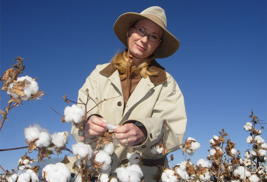 Jane Dever, organic cotton breeder at Texas A&M AgriLife Research