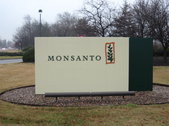 Is Monsanto going non-bmo?