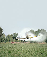 Pesticide crop duster and gm crops