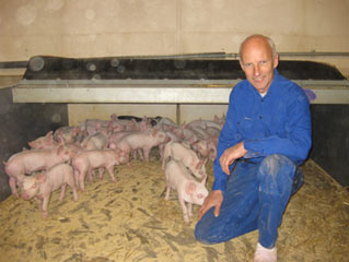lb Borup Pedersen's believes that GM soy caused reduced fertility in his pigs