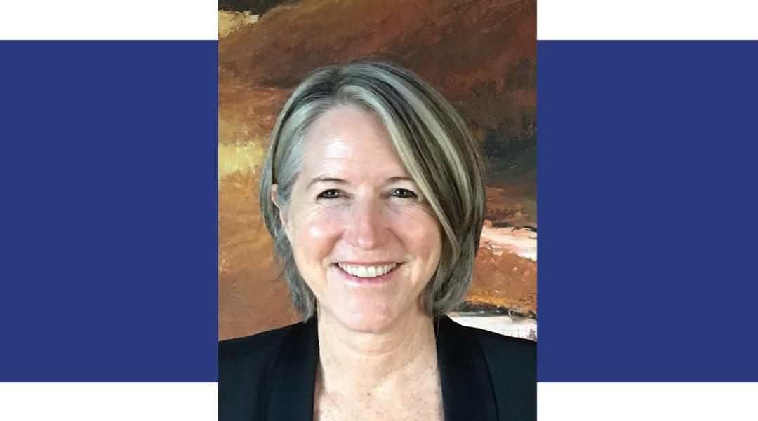 Vincanne Adams, Ph.D.