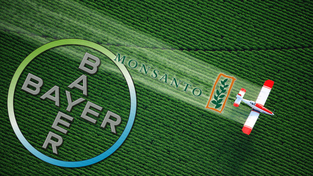 Monsanto Bayer field