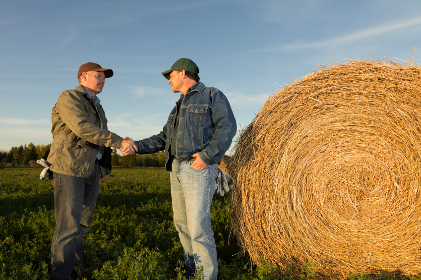 Farmers shaking hands in field