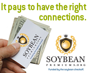 Soybean Premiums