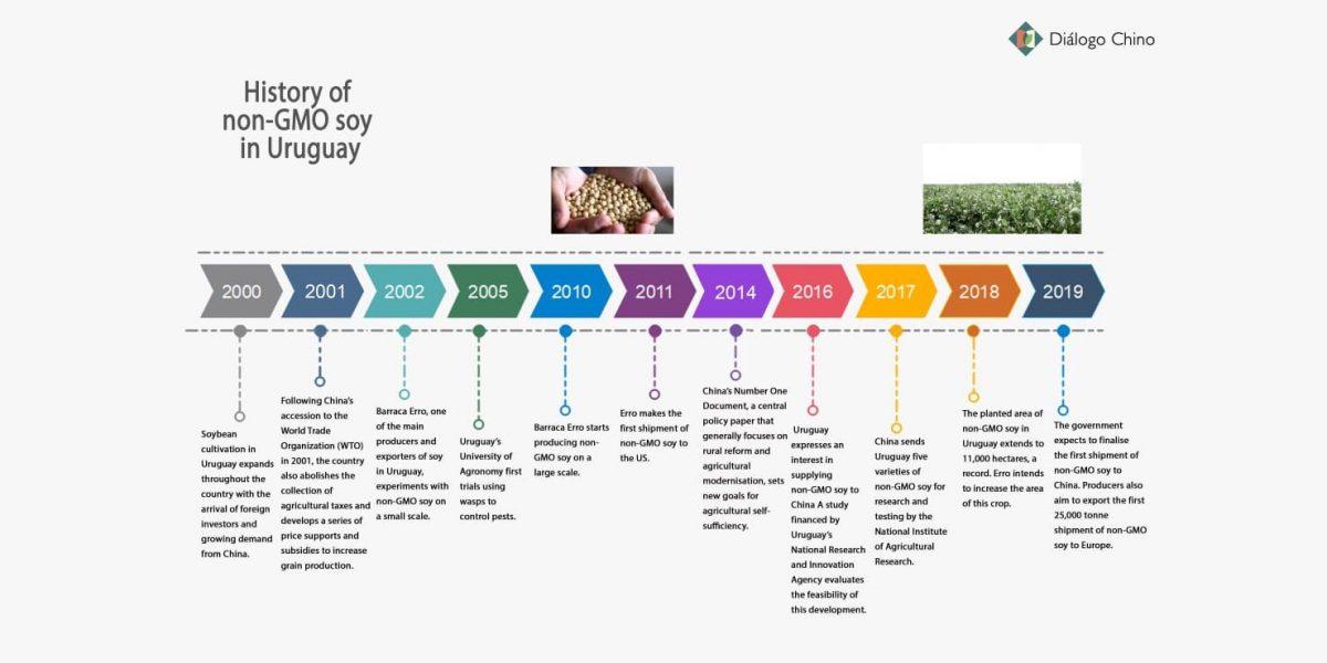 History of non-GMO soy in Uruguay chart