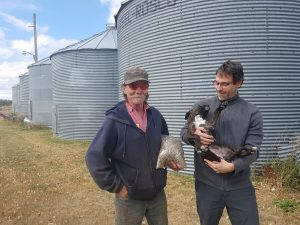 Farmers with grain and dog in front of grain bins