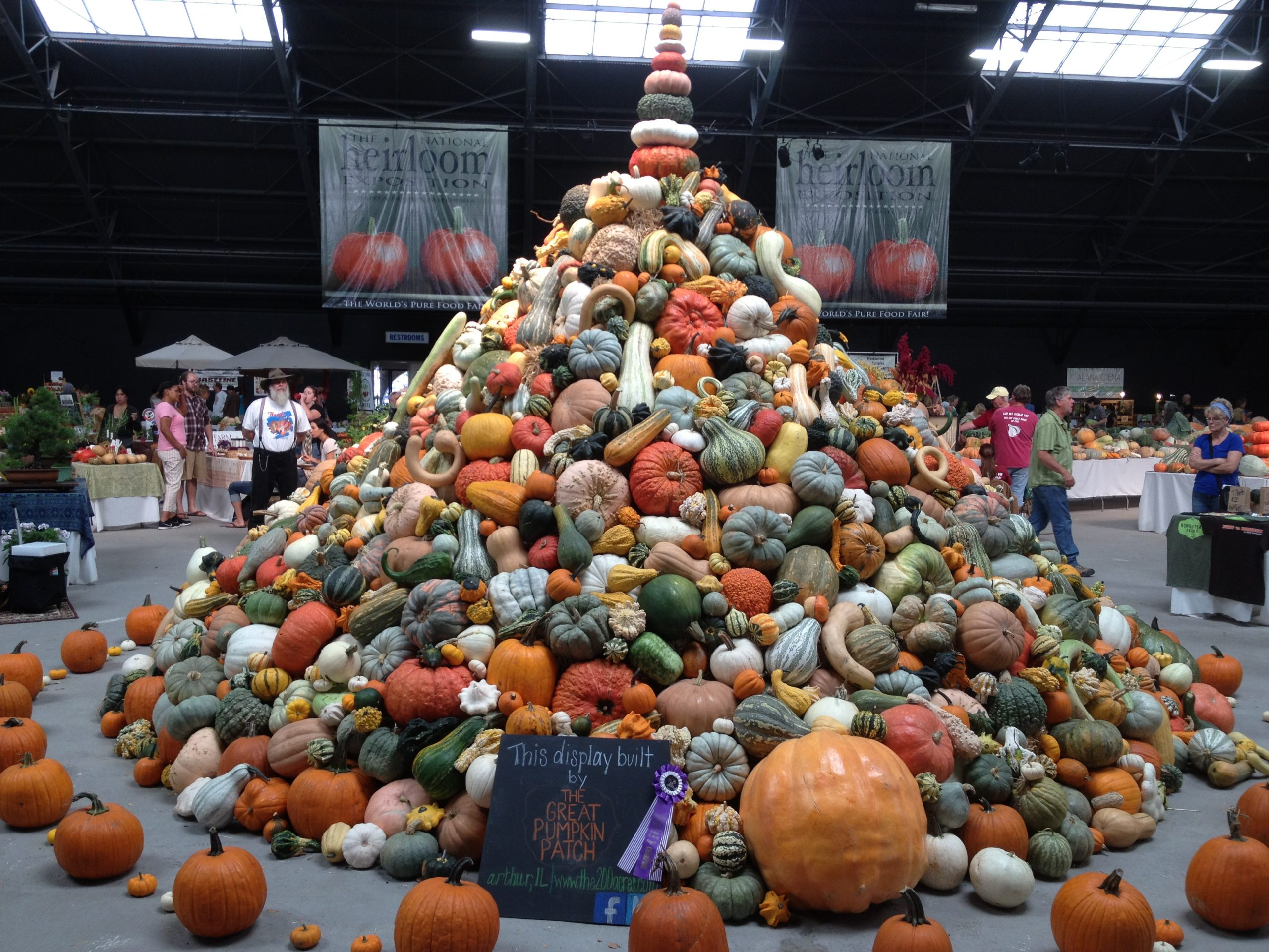 Pile of colorful squash