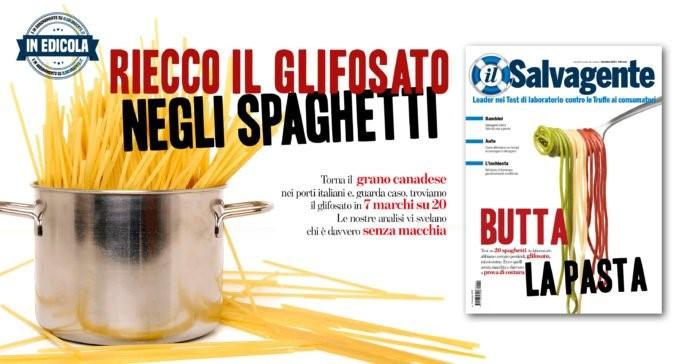 Italian food industry website photo