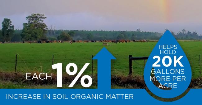 Increase in organic soil matter